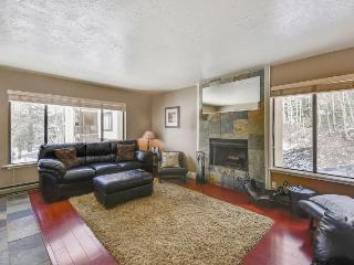 Brian Head Village - across from Giant Steps - Brian Head vacation rentals