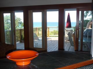 Amazing Lakeview-  White Sand Beach- sleeps 2-17 - Michigan City vacation rentals