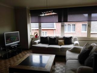 Cozy Condo with Television and Central Heating - Tongeren vacation rentals