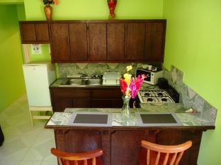 Pelican 1 Bedroom 1 Bathroom Condo Unit - San Pedro vacation rentals