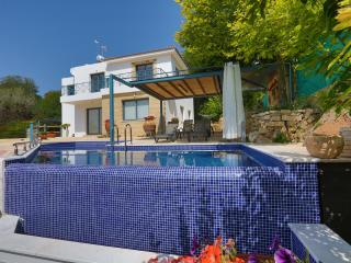 Infinite Blu Villa - Kissonerga vacation rentals