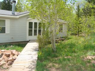 Escape to Black Bear Hollow--we are pet friendly! - Red Feather Lakes vacation rentals