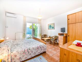 TH01019 Apartments Mirta / One bedroom A2 DALIA - Rabac vacation rentals