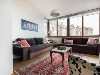 Winter discount! Nu renov, vus frm nearly every rm - Istanbul vacation rentals