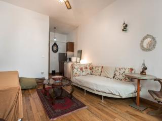 Cozy & Comfy Flat at Galata, Great Location - Istanbul vacation rentals