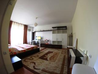Unirii Luxury Studio,Bucharest city center! - Bucharest vacation rentals