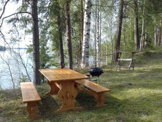 2 bedroom Condo with Internet Access in Punkaharju - Punkaharju vacation rentals