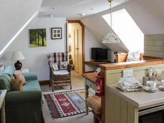 WOODPECKER LOFT, pet friendly, luxury holiday cottage, with a garden in East Anstey, Ref 8529 - Dulverton vacation rentals