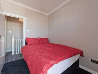 Large 2 bed apt near Temple Bar heart of dubln - Dublin vacation rentals