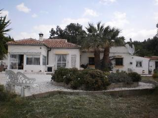 Nice Villa with Dishwasher and Microwave - Almogia vacation rentals