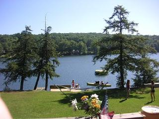 Laurel Lake Cottage - Brackney vacation rentals