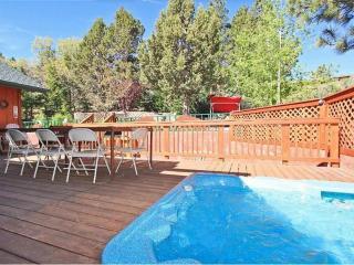 Grizzly Bear Lodge - Big Bear City vacation rentals