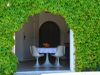 Romantic 1 bedroom Villa in Montfort-sur-Argens - Montfort-sur-Argens vacation rentals