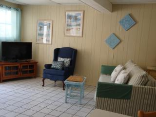 Cozy House with Internet Access and A/C - Saint Pete Beach vacation rentals