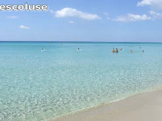 Monolocale, a pochi km dalle Maldive del Salento - Marina di Novaglie vacation rentals