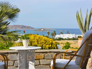Lovely Villa with Internet Access and A/C - Naoussa vacation rentals