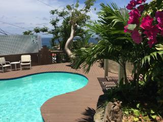 Beautiful House with Internet Access and A/C - Cruz Bay vacation rentals
