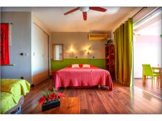 Beautiful Papeete Studio rental with A/C - Papeete vacation rentals