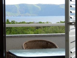111201 Beautiful apartment with panoramic seaview - Pinezici vacation rentals