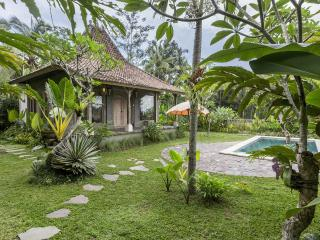 Romantic 1 bedroom Ubud Villa with Television - Ubud vacation rentals