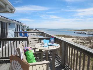 22 Starfish Lane Chatham Cape Cod - Chatham vacation rentals