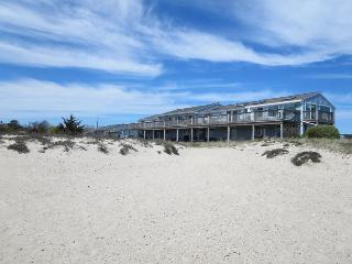 16 Starfish Lane Chatham Cape Cod - Seaside Stroll - Chatham vacation rentals