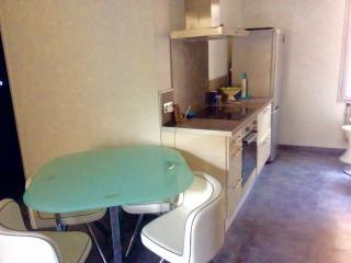 2 bedroom Condo with Internet Access in Clermont-Ferrand - Clermont-Ferrand vacation rentals