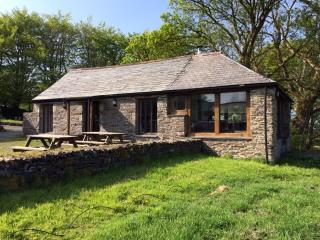 Beautiful House with Internet Access and Washing Machine - Camelford vacation rentals
