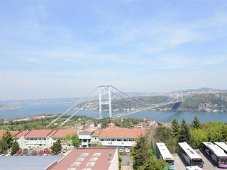 Beautiful 3 bedroom Resort in Sariyer District - Sariyer District vacation rentals