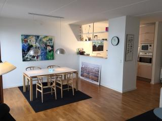 Modern apartment in Copenhagen City - Copenhagen vacation rentals