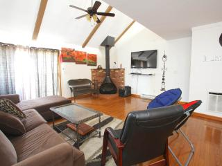 Just Steps Away From Camelback Ski Mountain - Tannersville vacation rentals