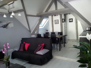 Amboise appartement tour de l'horloge - Amboise vacation rentals