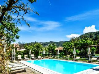 VILLA LIMONETO D - SORRENTO CENTRE - Sorrento - Sorrento vacation rentals