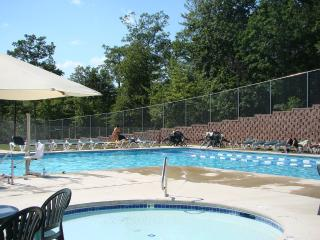 Falls Circle @ Saw Creek - Bushkill vacation rentals