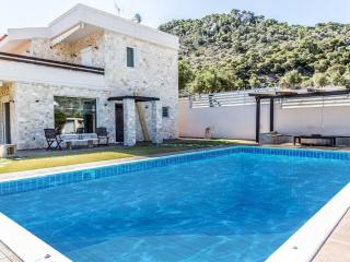 Spacious Villa with Television and Water Views - Kinetta vacation rentals