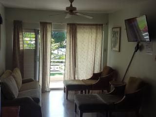 Beautiful Condo with Internet Access and Parking Space - Ocho Rios vacation rentals