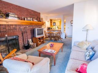 Comfortable House with Internet Access and Microwave - Killington vacation rentals