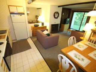 WhiffletreeF1 - Killington vacation rentals