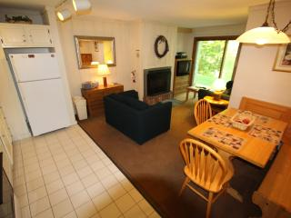 WhiffletreeH1 - Killington vacation rentals