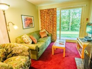 Adorable House with Internet Access and Private Outdoor Pool - Killington vacation rentals