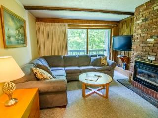 3 bedroom House with Internet Access in Killington - Killington vacation rentals