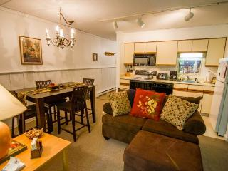 1 bedroom House with Internet Access in Killington - Killington vacation rentals