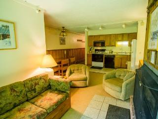 Nice 2 bedroom House in Killington - Killington vacation rentals