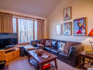 Wonderful House with Internet Access and Microwave - Killington vacation rentals