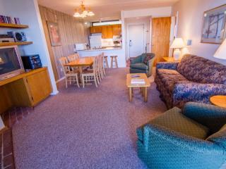 PinnacleC16 - Killington vacation rentals
