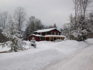 Charming 4 bedroom House in Pittsfield with Internet Access - Pittsfield vacation rentals