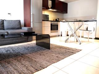 Modern One Bedroom Icon apartment - Cape Town vacation rentals