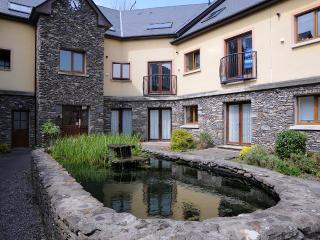 An Doirin Courtyard Apartment Dingle - Dingle vacation rentals