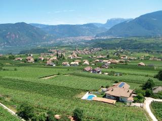 Ferienwohnungen Rigott Strahlerhof - Appiano sulla Strada del Vino vacation rentals