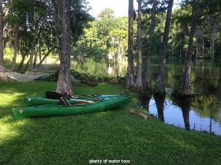 Blue Run Cabin: Unique Rainbow River Location - Dunnellon vacation rentals